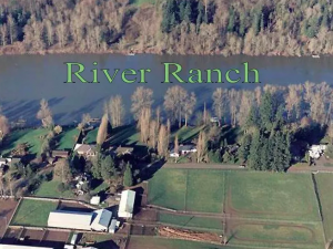 River Ranch Equestrian Day Camp